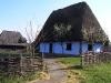 Muzeul Tarii Oasului